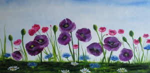 Purple poppies.